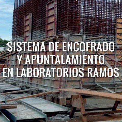 Sistema de Encofrado y Apuntalamiento en Laboratorios Ramos
