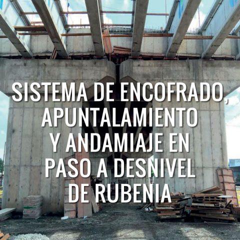 Sistema de Encofrado, Apuntalamiento y Andamiaje en Paso a Desnivel de Rubenia